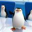 penguins_a3
